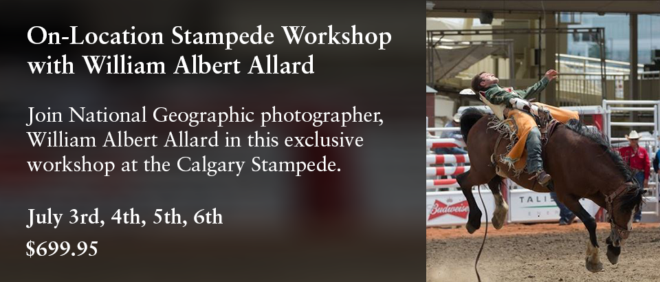 On-Location Stampede Workshop with William Albert