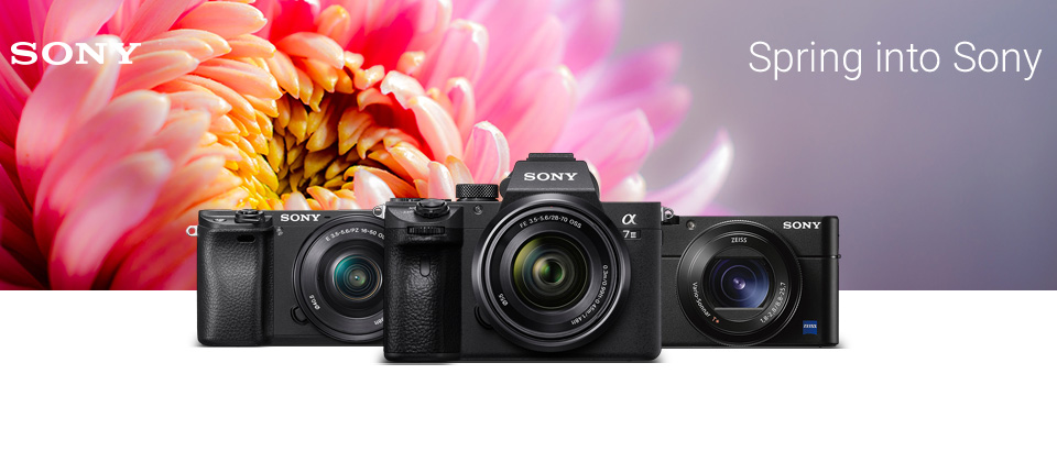 Spring into Sony