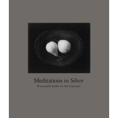 Meditations in Silver: Paul Camponigro