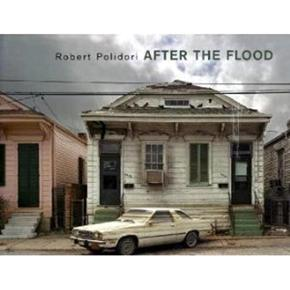 After the Flood By: Robert Polidori