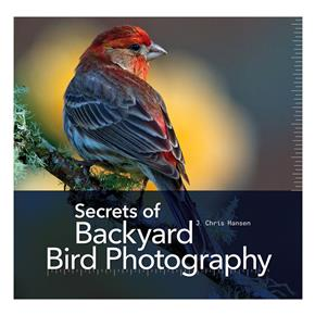 J. Chris Hansen: Secrets of Backyard Bird Photography